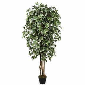 Choinka sztuczna Fikus Benjamin zielona biała 170 cm