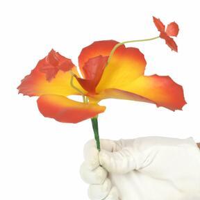 Kwiat motyla 20 cm