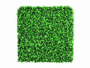 Panel sztuczny liść Buk - 50x50 cm