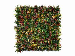 Panel z kwiatów sztucznych Leucadendron - 50x50 cm