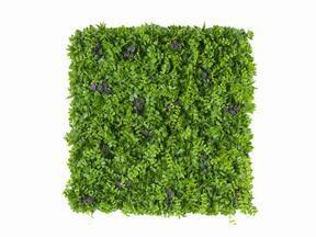 Panel ze sztucznych kwiatów Pennywort - 50x50 cm