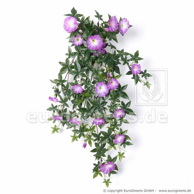Petunia sztuczna wąs fioletowy 75 cm