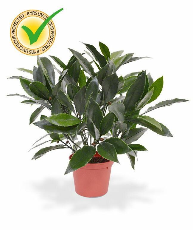 Roślina sztuczna Laur prawa 35 cm