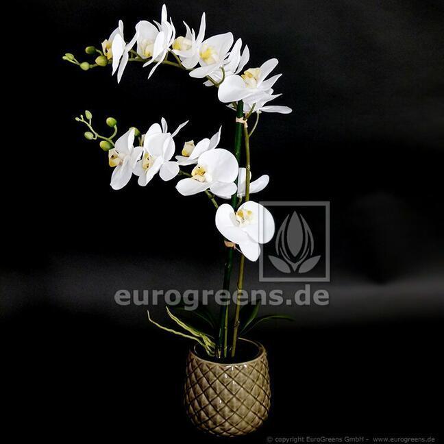 Roślina sztuczna Orchidea biała 65 cm