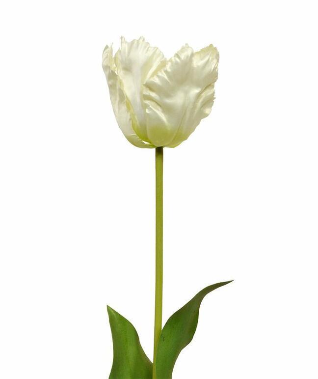 Sztuczna gałąź Tulipan krem 70 cm
