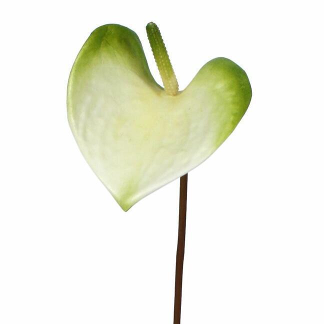 Sztuczna gałązka Anturium zielono-biała 50 cm