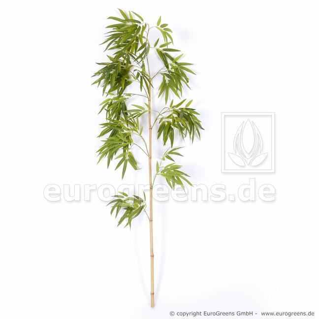 Sztuczna gałązka Bambus chiński 150 cm