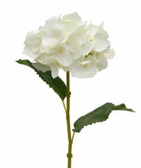 Sztuczna gałązka Krem z hortensji 45 cm