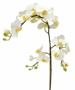 Sztuczna gałązka Orchidei biała 110 cm