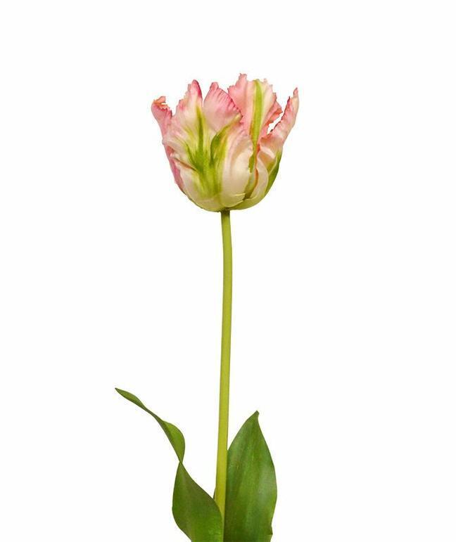 Sztuczna gałązka Tulipan zielono-różowy 70 cm