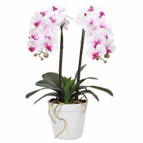 Sztuczna orchidea 43 cm
