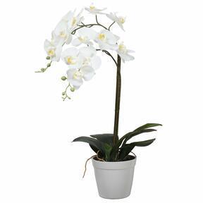 Sztuczna orchidea biała 65 cm