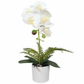 Sztuczna orchidea biała z paprocią 37 cm