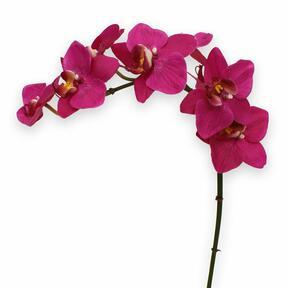 Sztuczna orchidea fioletowa 80 cm