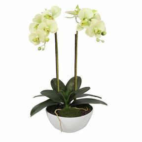 Sztuczna orchidea maślana 50 cm