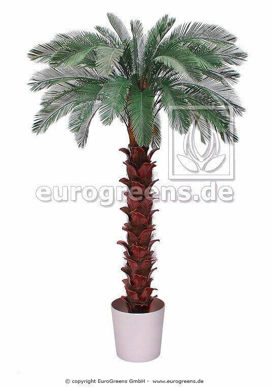 Sztuczna palma cycas 300 cm