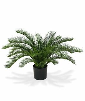 Sztuczna palma Cycas 60 cm