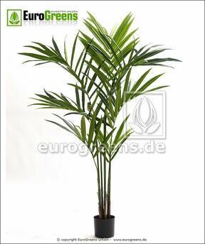 Sztuczna palma Kentia 170 cm