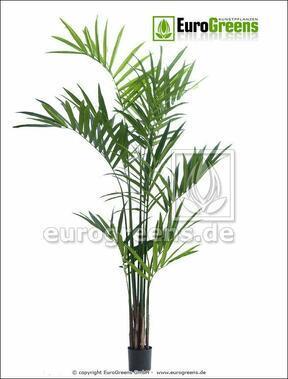Sztuczna palma Kentia 240 cm