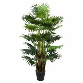 Sztuczna palma Livistona mini 160 cm
