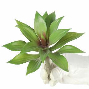 Sztuczna roślina agawa 16 cm