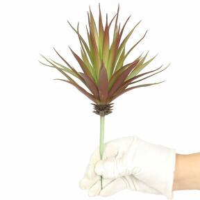 Sztuczna roślina Agawa bordowa 20 cm