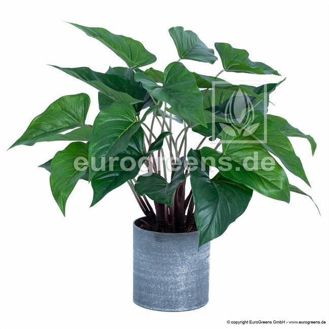 Sztuczna roślina Anturium 45 cm