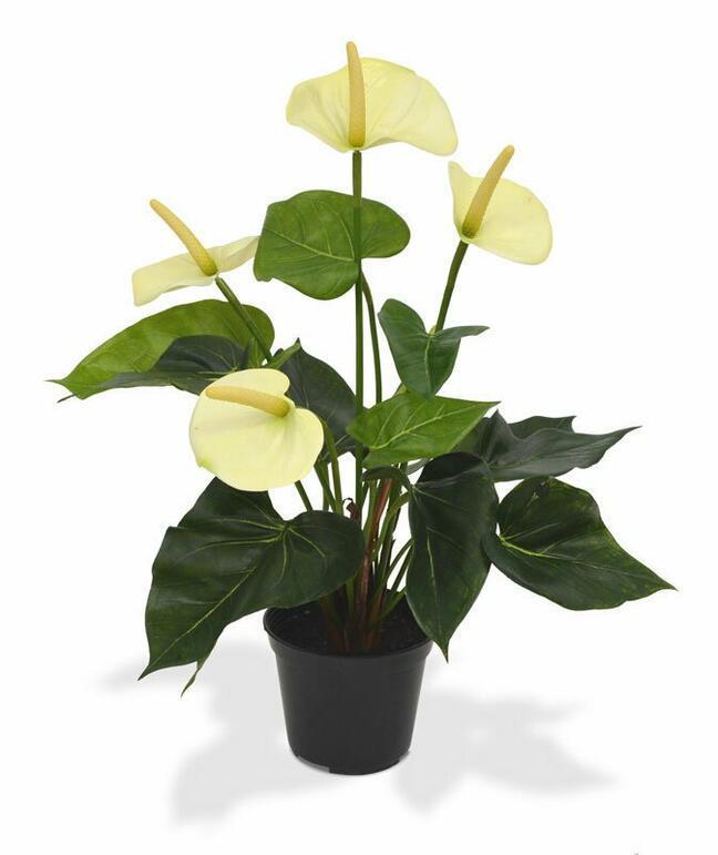 Sztuczna roślina Anturium białe 40 cm