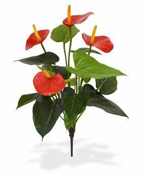 Sztuczna roślina Anturium czerwone 40 cm