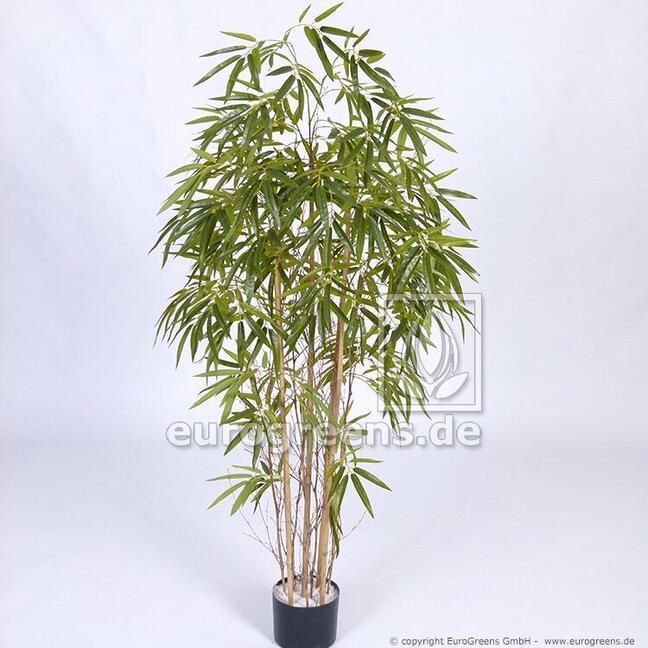 Sztuczna roślina Bambus chiński 150 cm