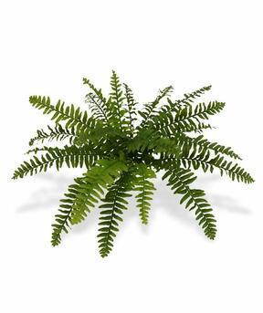 Sztuczna roślina Boston paproć 40 cm