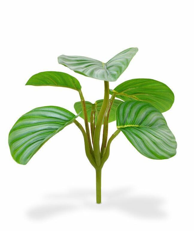 Sztuczna roślina Calathea orbifolia 20 cm