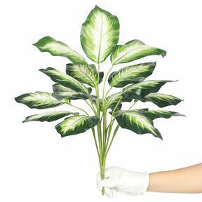 Sztuczna roślina Dífenbachia biała 50 cm
