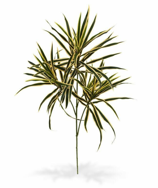 Sztuczna roślina Dracena 80 cm