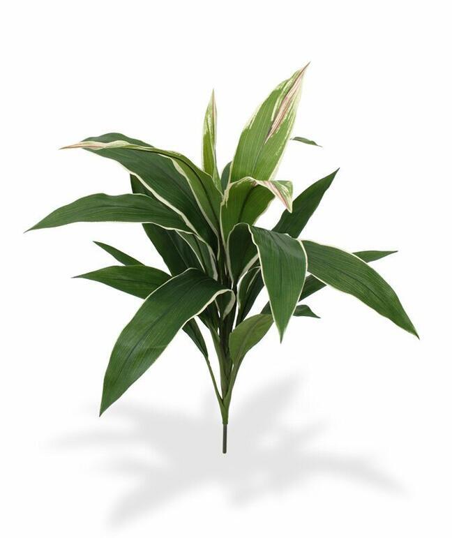 Sztuczna roślina Dracena pachnąca 60 cm