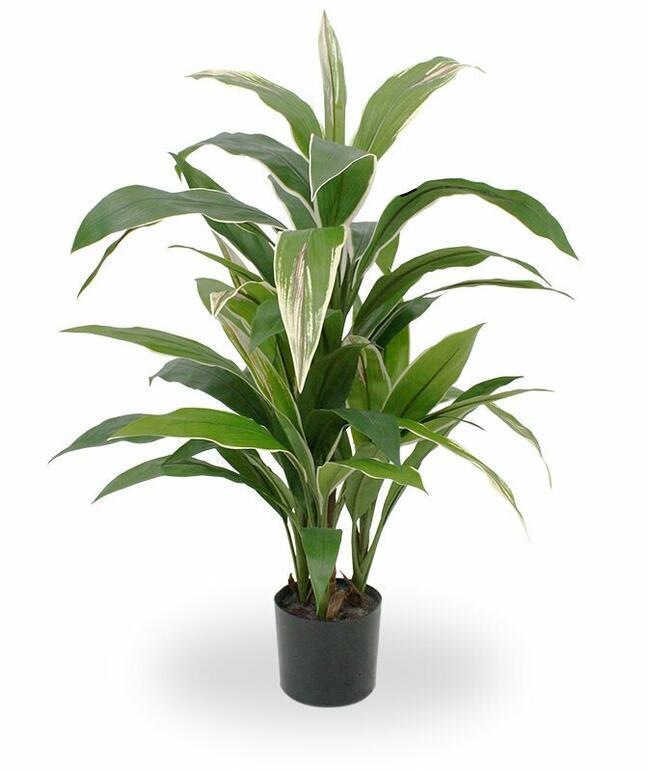 Sztuczna roślina Dracena pachnąca 80 cm