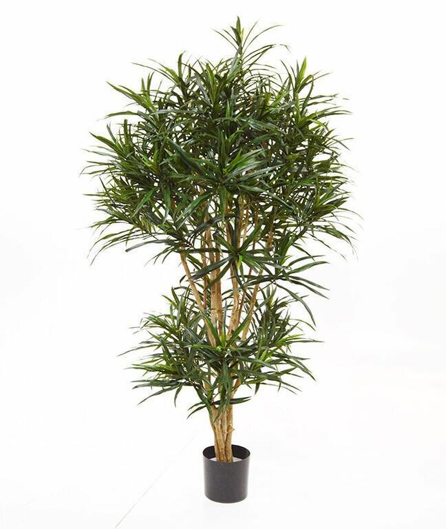 Sztuczna roślina Dracena refleks 160 cm