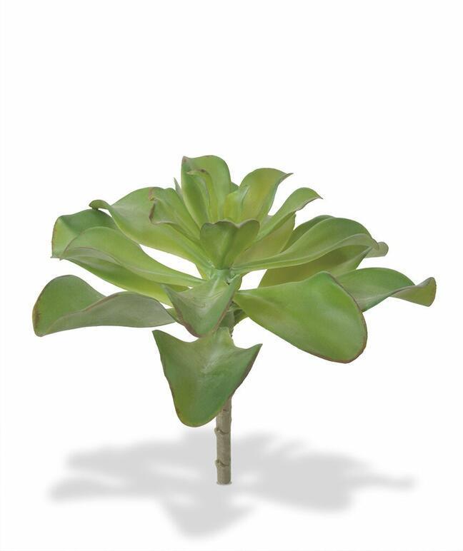 Sztuczna roślina Eševéria 20 cm
