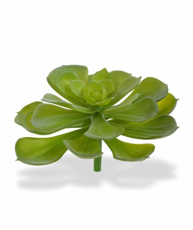 Sztuczna roślina Esheveria włosie 10 cm