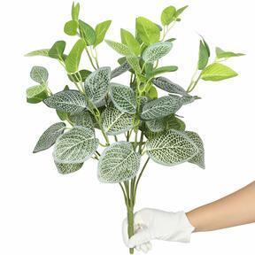 Sztuczna roślina Fitónia biała 45 cm