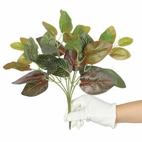 Sztuczna roślina Fitonia czerwona 25 cm