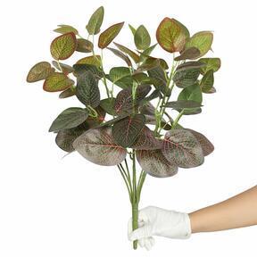 Sztuczna roślina Fitonia czerwona 45 cm