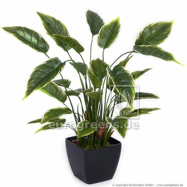Sztuczna roślina Hosta 50 cm