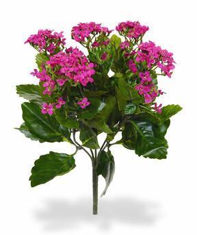 Sztuczna roślina Kalanchoa różowa 30 cm