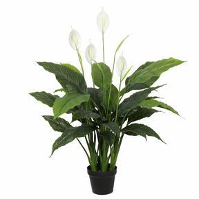 Sztuczna roślina Łopata 108 cm