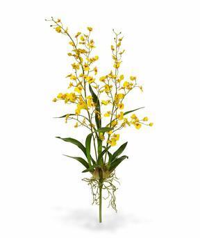 Sztuczna roślina Orchidea Oncídium 80 cm