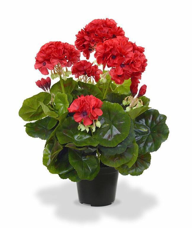 Sztuczna roślina Pakost czerwona 40 cm