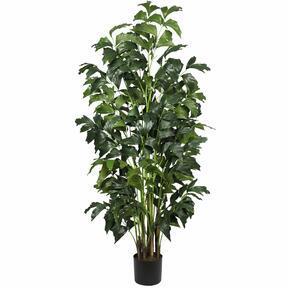 Sztuczna roślina Palicha 160 cm