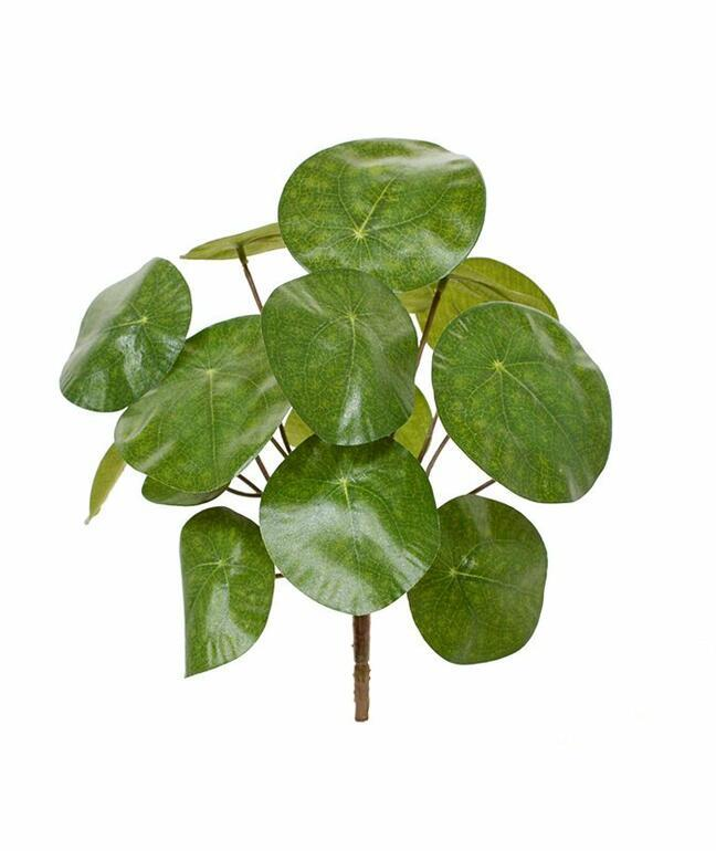 Sztuczna roślina Pilea peperomioides 20 cm