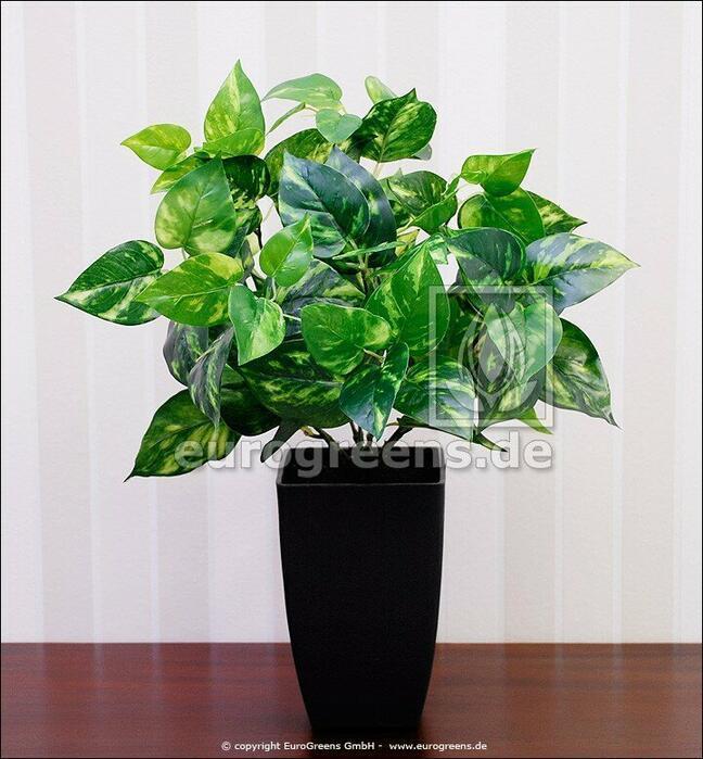 Sztuczna roślina Potosovec 40 cm